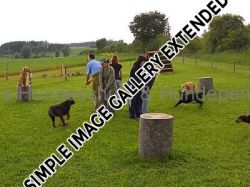 Traingsgelaende002